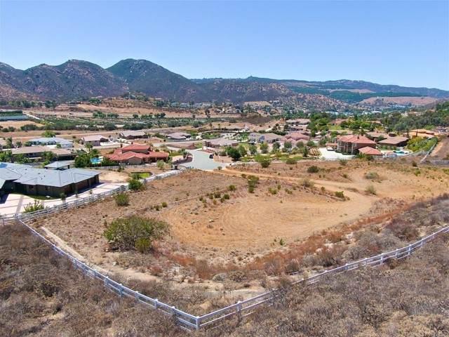 Blossom Ridge, El Cajon, CA 92021 (#PTP2105482) :: Rubino Real Estate