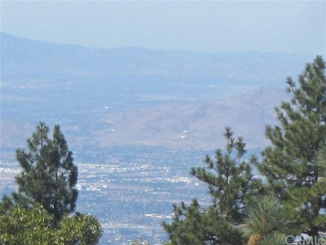 30124 Enchanted, Running Springs, CA 92382 (#EV21171810) :: Solis Team Real Estate