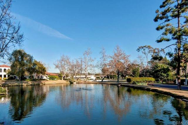5108 Don Miguel Drive, Carlsbad, CA 92010 (#NDP2109147) :: SD Luxe Group