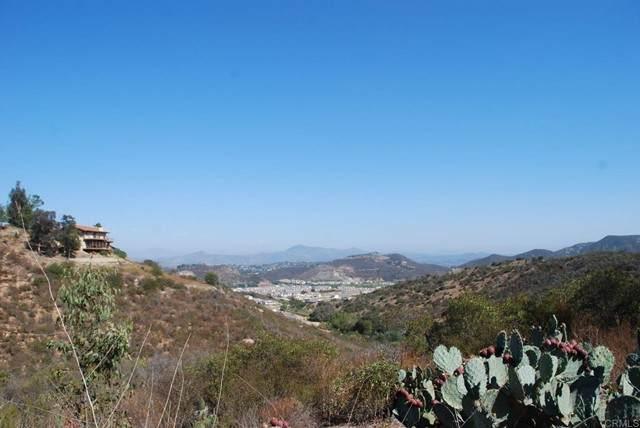 Coronado Hills, San Marcos, CA 92078 (#NDP2109130) :: The Todd Team Realtors