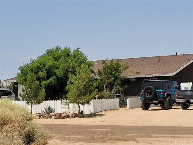 6657 Xavier Avenue, California City, CA 93505 (#CV21178322) :: Windermere Homes & Estates