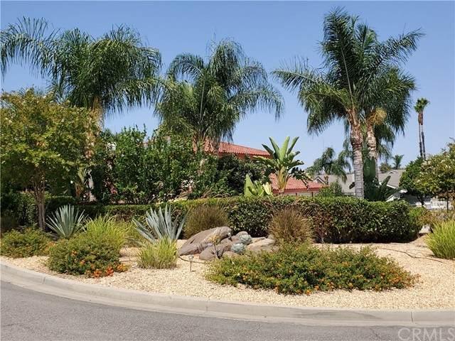 30595 Pauma Place, Canyon Lake, CA 92587 (#SW21179381) :: The Todd Team Realtors