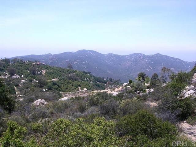 28511 Giant Rock, Escondido, CA 92026 (#NDP2109585) :: Keller Williams - Triolo Realty Group