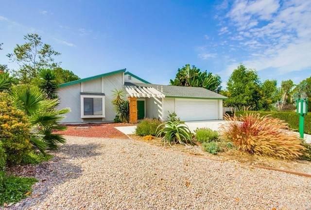 1198 Drifting Circle Drive, Vista, CA 92081 (#PTP2106006) :: Solis Team Real Estate