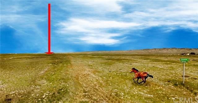 13390 Cochise, Santa Margarita, CA 93453 (#PI21190285) :: Windermere Homes & Estates