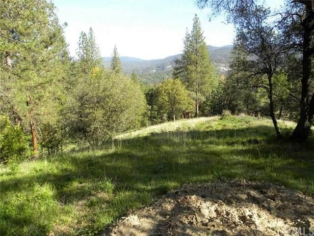 0 Road 222, Oakhurst, CA 93644 (#FR21190460) :: Windermere Homes & Estates