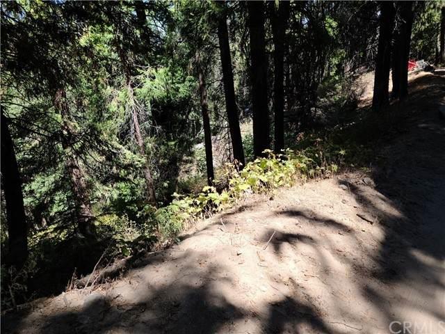 0 El Valle, Cedar Pines Park, CA 92322 (#EV21190780) :: Windermere Homes & Estates