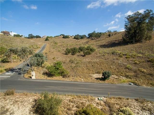 1170 Montecito Ridge - Photo 1