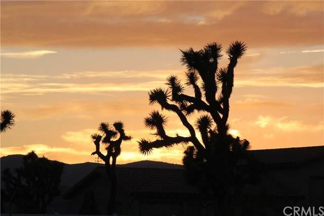 0 Sun Mesa - Photo 1