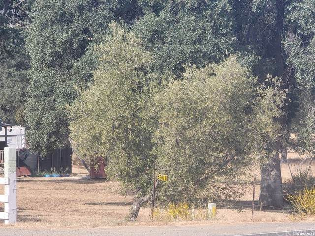 6961 State Highway 49, Mariposa, CA 95338 (#MC21204826) :: The Stein Group