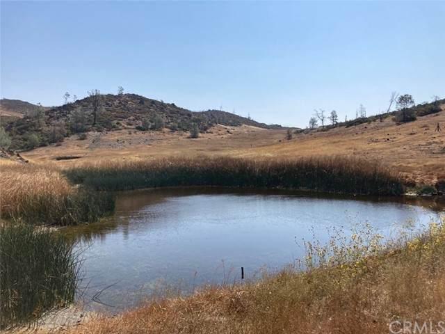 27102 Morgan Valley - Photo 1