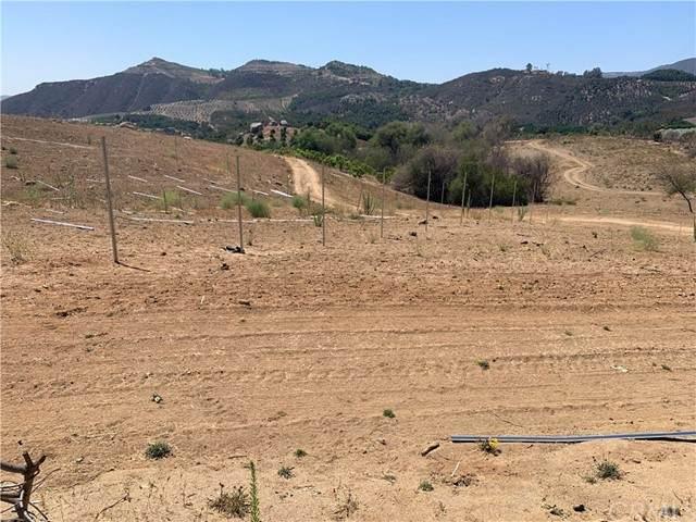 45 Buena Vista Road, Temecula, CA 92590 (#IG21204106) :: Keller Williams - Triolo Realty Group