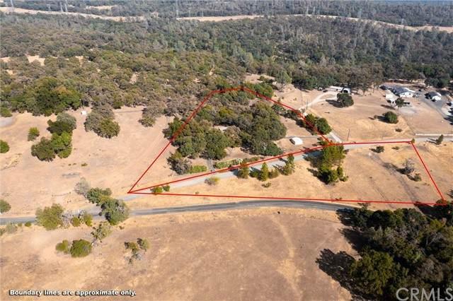 2556 Oregon Gulch Road, Oroville, CA 95965 (#SN21204634) :: Windermere Homes & Estates