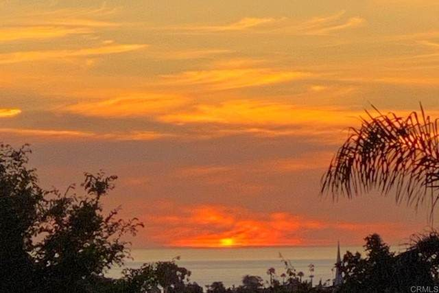 1691 Laurel Rd., Oceanside, CA 92054 (#NDP2110814) :: Carrie Filla & Associates