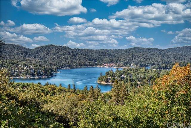 1289 Yellowstone Drive, Lake Arrowhead, CA 92352 (#EV21203958) :: COMPASS