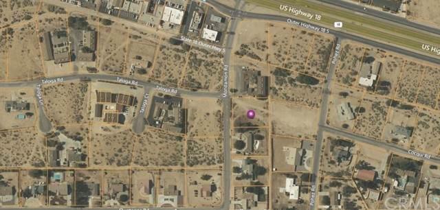 4731150 Mondamon Rd, Apple Valley, CA 92307 (#EV21200504) :: American Dreams Real Estate