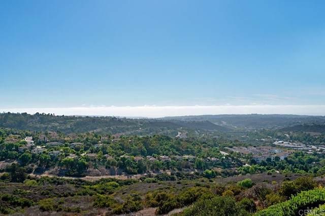 2185 Coast Avenue, San Marcos, CA 92078 (#NDP2111077) :: Zember Realty Group