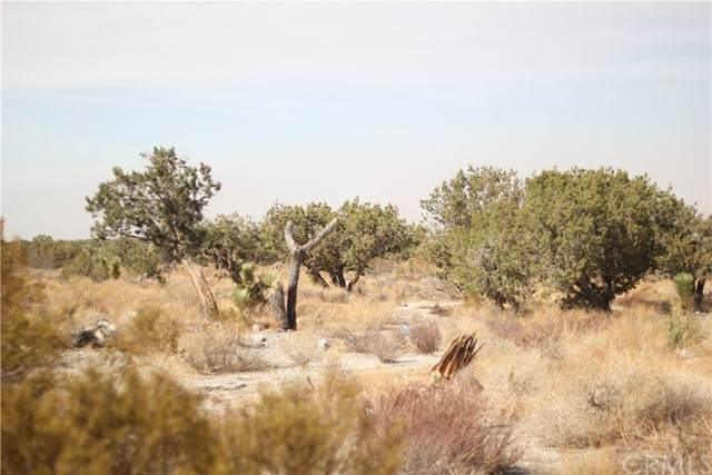 0 Antelope Highway Apn 3064-013-065 - Photo 1
