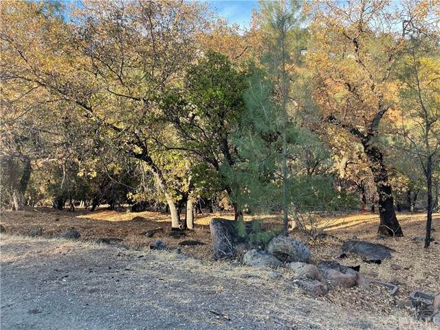 17699 Deer Hill - Photo 1