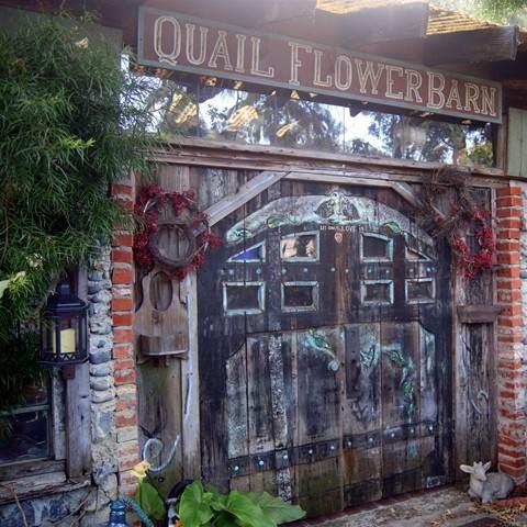 501 Quail Gardens Drive, Encinitas, CA 92024 (#NDP2111205) :: Solis Team Real Estate