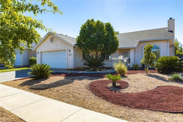 1209 Whitewood Way, Chico, CA 95973 (#SN21218260) :: Wannebo Real Estate Group