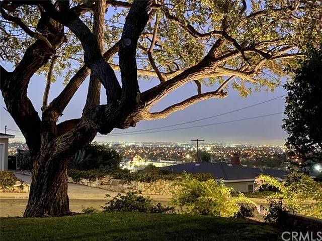 2408 Nearcliff Street, Torrance, CA 90505 (#SB20254603) :: Windermere Homes & Estates