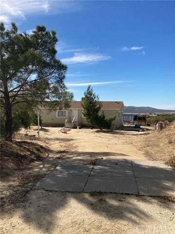 41755 Heller Springs Road, Anza, CA 92539 (#SW21225314) :: American Dreams Real Estate