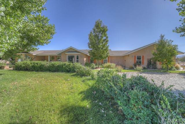 40982 S Caliente Road, Aguanga, CA 92536 (#SW21227102) :: Rubino Real Estate