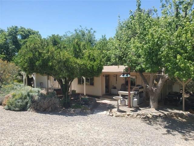 54350 Boulton Lane, Anza, CA 92539 (#SW21229169) :: American Dreams Real Estate