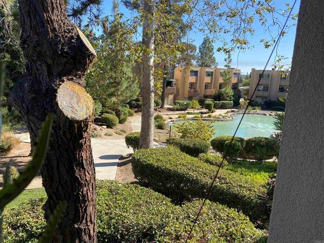 5700 Baltimore, La Mesa, CA 91942 (#NDP2111854) :: American Dreams Real Estate