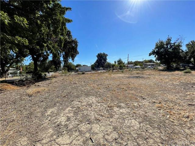 213 Santa Rosa, Gerber, CA 96035 (#SN21231374) :: Windermere Homes & Estates