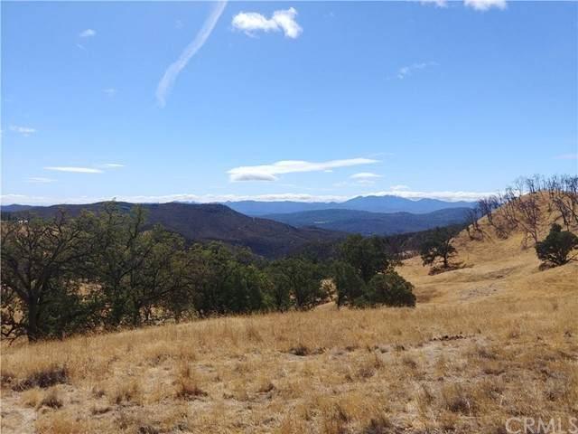 22034 Morgan Valley, Lower Lake, CA 95457 (#LC21234126) :: Dannecker & Associates
