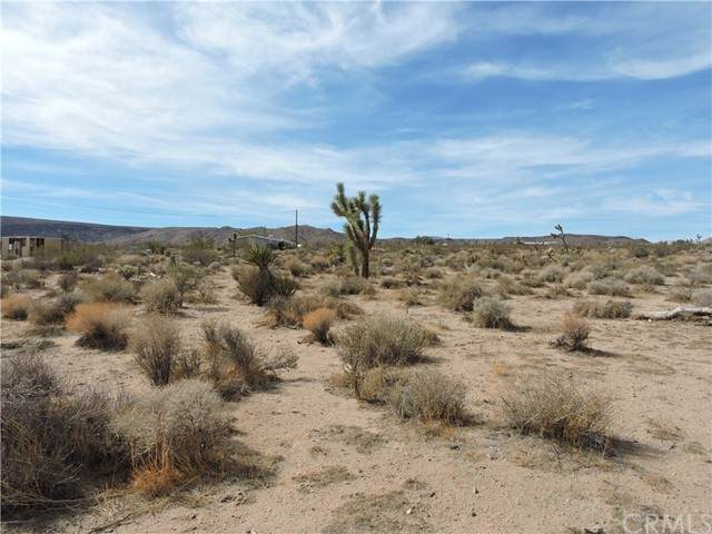 0 Wamego, Yucca Valley, CA 92284 (#EV21236268) :: Pacific Palace Realty, Inc.