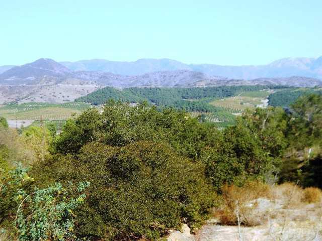 4040 Pala Mesa Drive Drive #4040, Fallbrook, CA 92028 (#140007301) :: Neuman & Neuman Real Estate Inc.