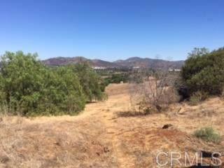 1320 Richland Rd 2&3, San Marcos, CA 92069 (#170029610) :: Neuman & Neuman Real Estate Inc.