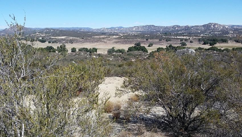 40 acres Star Ranch Rd - Photo 1