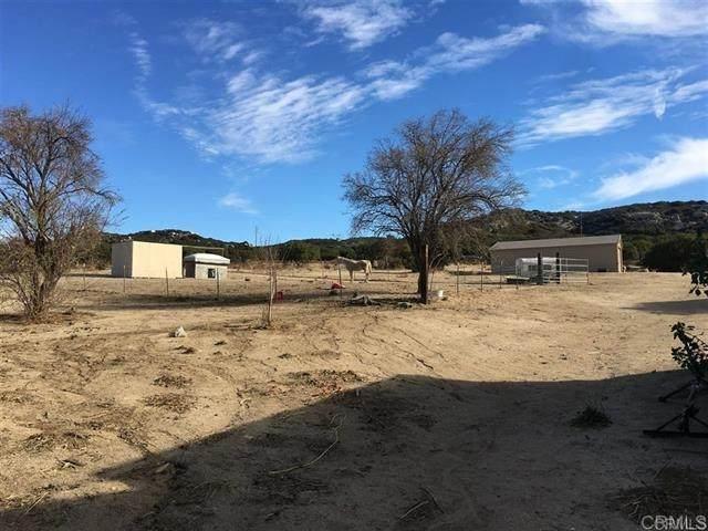 2087 Buckman Springs, Campo, CA 91906 (#200014598) :: Keller Williams - Triolo Realty Group
