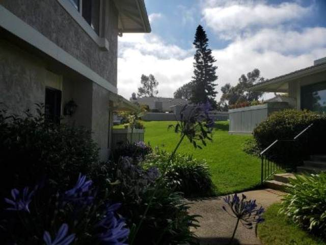 7974 Playmor Terrace, San Diego, CA 92122 (#200035716) :: Whissel Realty