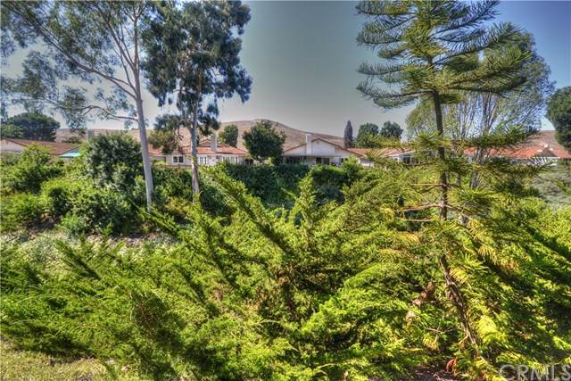 5304 Cantante, Laguna Woods, CA 92637 (#301632442) :: The Yarbrough Group