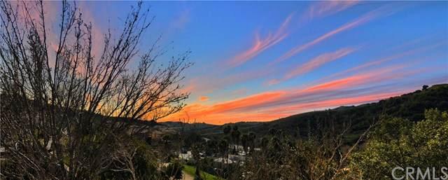 19801 Meadow Ridge Drive #15, Trabuco Canyon, CA 92679 (#302441395) :: Pugh-Thompson & Associates