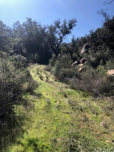 0 Rancho Heights, Pala, CA 92082 (#302451741) :: Keller Williams - Triolo Realty Group
