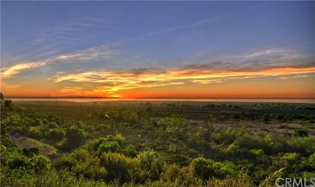1099 Mesa Bluff Drive - Photo 1