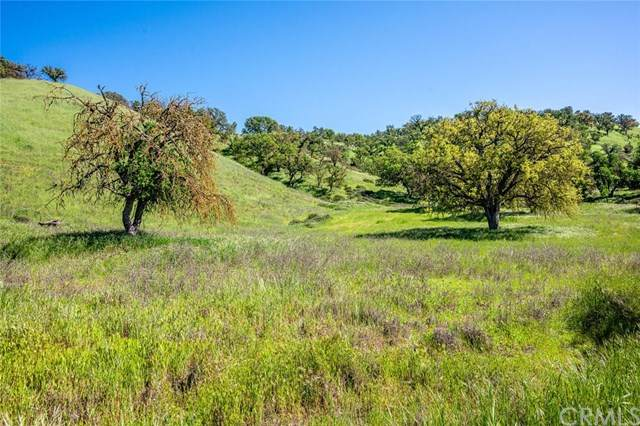 0 Hidden Creek, San Miguel, CA 93451 (#302502117) :: Keller Williams - Triolo Realty Group
