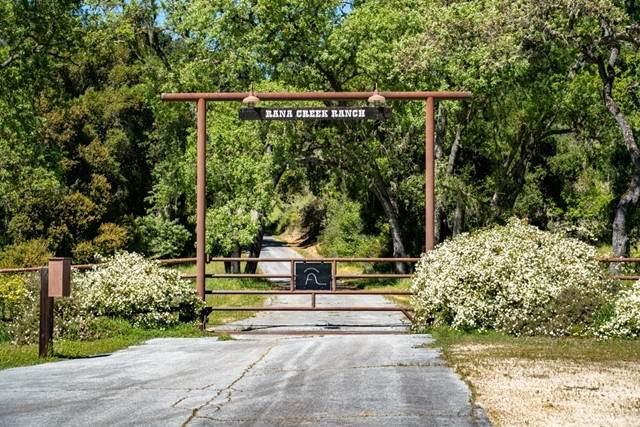 35351 E Carmel Valley, Carmel Valley, CA 93924 (#NS20098450) :: SD Luxe Group
