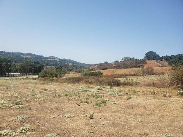 Camino Del Rey, Bonsall, CA 92003 (#200041590) :: The Marelly Group | Sentry Residential