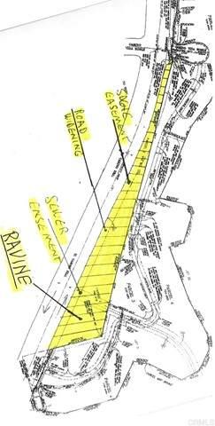 19 El Camino Real, Carlsbad, CA 92009 (#NDP2000568) :: COMPASS
