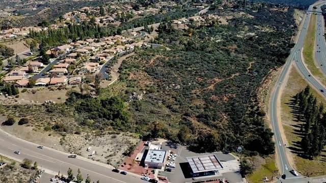 1182 Victoria Park Terrace, Alpine, CA 91901 (#PTP2000682) :: PURE Real Estate Group