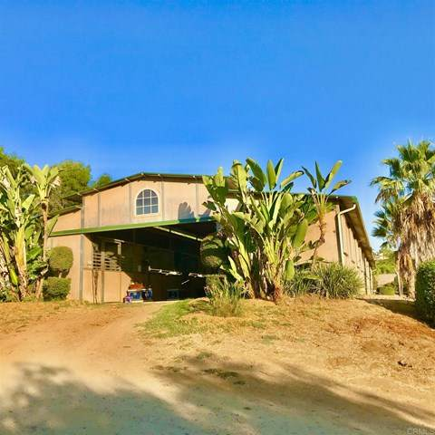 Via Monserate, Fallbrook, CA 92003 (#NDP2002407) :: The Marelly Group | Compass