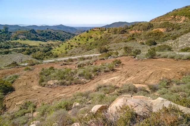 45235 Via Renaissance, Temecula, CA 92590 (#NDP2103173) :: Wannebo Real Estate Group