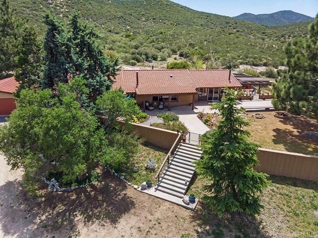 36263 Montezuma Valley Road, Ranchita, CA 92066 (#NDP2103729) :: Team Forss Realty Group